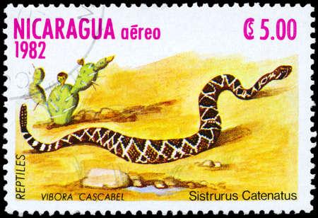 rattlesnake: NICARAGUA - alrededor de 1982: A sello impreso en NICARAGUA muestra la imagen de un Massasauga con la descripci�n Sistrurus catenatus de la serie Reptiles, alrededor de 1982