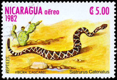 """NICARAGUA - CIRCA 1982: A Stamp printed in NICARAGUA shows the image of a Massasauga with the description """"Sistrurus catenatus"""" from the series """"Reptiles"""", circa 1982"""