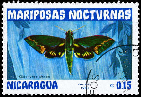 NICARAGUA - CIRCA 1983: A Stamp printed in NICARAGUA shows image of a Moth with the inscription Xilophanes chiron from the series Nocturnal Moths, circa 1983 photo