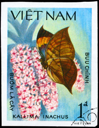 mimetism: VIETNAM - CIRCA 1983: A Stamp printed in VIETNAM shows image of a Butterfly with the description Kallima inachus, series, circa 1983