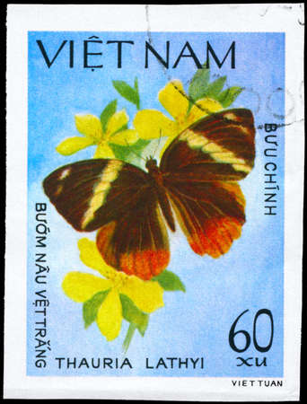 VIETNAM - CIRCA 1983: A Stamp printed in VIETNAM shows image of a Butterfly with the description Thauria lathyi, series, circa 1983  photo