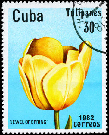 CUBA - CIRCA 1982: A Stamp shows image of a Tulip with the inscription