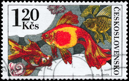 CZECHOSLOVAKIA - CIRCA 1975: A Stamp printed in CZECHOSLOVAKIA shows image of a Goldfishes from the series