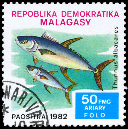 MALAGASY - CIRCA 1982: A Stamp printed in MALAGASY shows image of a Yellowfin Tuna with the inscription