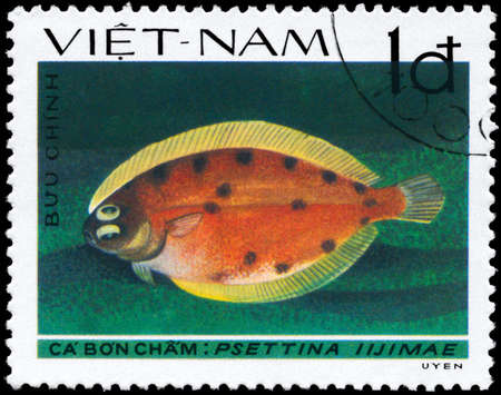 VIETNAM - CIRCA 1982: A Stamp printed in VIETNAM shows image of a Lefteye Flounder with the inscription