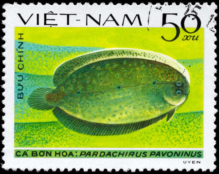 VIETNAM - CIRCA 1982: A Stamp printed in VIETNAM shows image of a Peacock Sole with the inscription Pardachirus pavoninus from the series Fish, circa 1982 photo