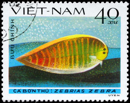subsea: VIETNAM - CIRCA 1982: A Stamp printed in VIETNAM shows image of a Zebra Sole with the inscription Zebrias zebra from the series Fish, circa 1982  Stock Photo