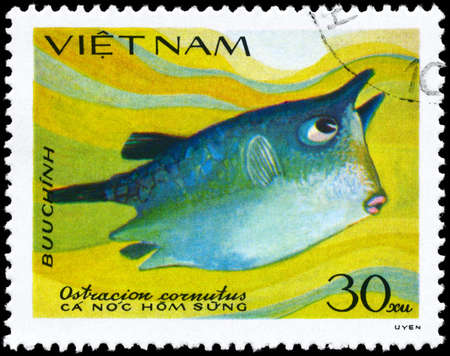 subsea: VIETNAM - CIRCA 1984: A Stamp printed in VIETNAM shows image of a Boxfish with the inscription Ostracion cornutus from the series Fish, circa 1984 Stock Photo