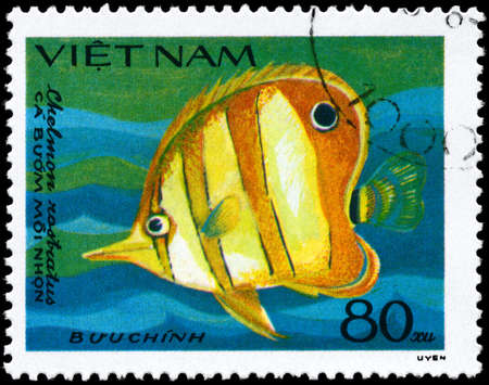 VIETNAM - CIRCA 1984: A Stamp printed in VIETNAM shows image of a Butterflyfish with the inscription Chelmon rostratus from the series Fish, circa 1984 photo