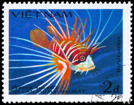 soldier fish: VIETNAM - CIRCA 1984: A Stamp printed in VIETNAM shows image of a Lionfish with the inscription Pterois russelli from the series Fish, circa 1984  Stock Photo