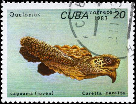 CUBA - CIRCA 1983: A Stamp printed in CUBA shows the image of a Loggerhead Sea Turtle with the description Caretta caretta from the series Turtles, circa 1983 photo
