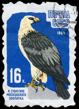 USSR - CIRCA 1964: A Stamp printed in USSR shows image of a Lammergeier from the series