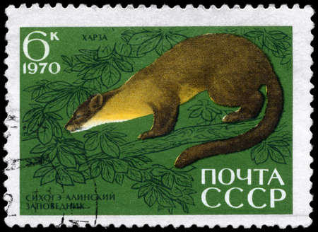 USSR - CIRCA 1970: A Stamp printed in USSR shows image of a Pine Marten from the series