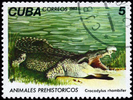 agape: CUBA - CIRCA 1982: A Stamp printed in CUBA shows image of a Crocodile with the designation Crocodylus rhombifer from the series Prehistoric Fauna, circa 1982