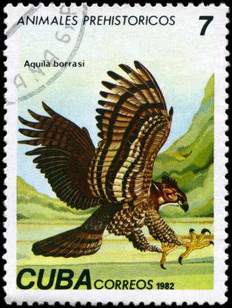 CUBA - CIRCA 1982: A Stamp printed in CUBA shows image of a Eagle with the designation Aquila borrasi from the series Prehistoric Fauna, circa 1982 photo