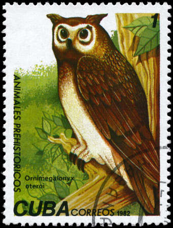 CUBA - CIRCA 1982: A Stamp printed in CUBA shows image of a Giant Owl with the designation Ornimegalonyx oteroi from the series Prehistoric Fauna, circa 1982 photo