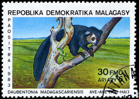 MALAGASY REPUBLIC - CIRCA 1983: A Stamp printed in MALAGASY REPUBLIC shows image of a Aye-aye with the description