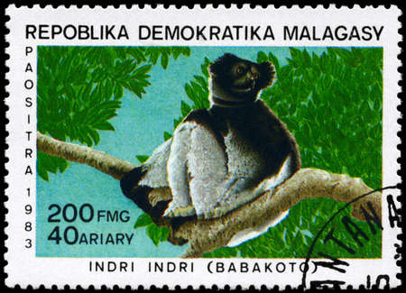 MALAGASY REPUBLIC - CIRCA 1983: A Stamp printed in MALAGASY REPUBLIC shows image of a Babakoto with the description
