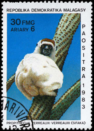 MALAGASY REPUBLIC - CIRCA 1983: A Stamp printed in MALAGASY REPUBLIC shows image of a White Sifaka with the description