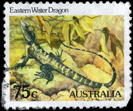 AUSTRALIA - CIRCA 1984: A Stamp printed in AUSTRALIA shows the image of a Eastern Water Dragon, series, circa 1984 Stock Photo - 9308421