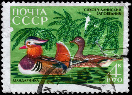 USSR - CIRCA 1970: A Stamp printed in USSR shows image of a Mandarin Ducks from the series