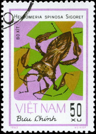 squash bug: VIETNAM - CIRCA 1982: A Stamp printed in VIETNAM shows the image of a Squash Bug with the description Helcomeria spinosa Sigoret from the series Chinch Bugs, circa 1982