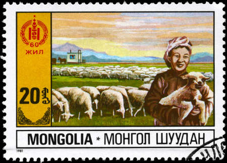 MONGOLIA - CIRCA 1981: A Stamp printed in MONGOLIA shows the Sheep Farming, from the series Economic Development, circa 1981 photo