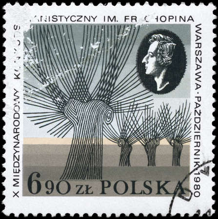 fryderyk chopin: POLAND - CIRCA 1980: A Stamp printed in POLAND shows the portrait of a Fryderyk Chopin (1810-1849), Composer, and devoted to Chopin Piano Competition, circa 1980
