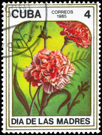 phytology: CUBA - CIRCA 1985: A Stamp printed in CUBA shows image of a Carnations, from the series Mothers Day, circa 1985