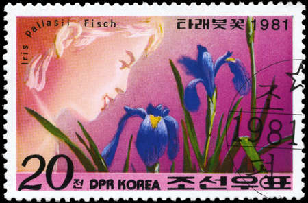 NORTH KOREA - CIRCA 1981: A Stamp printed in NORTH KOREA shows image of a Iris Pallasii Fisch, from the series