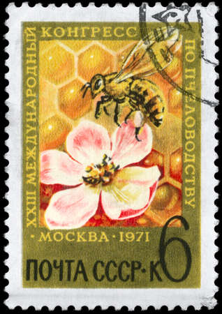 USSR - CIRCA 1971: A Stamp printed in USSR shows the Bee and Blossom, devoted to the 23rd International Beekeeping Congress, Moscow, circa 1971 photo