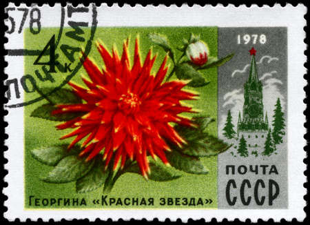 """USSR - CIRCA 1978: A Stamp printed in USSR shows the Dahlia """"Red Star"""" and Spasski Tower, from the series"""