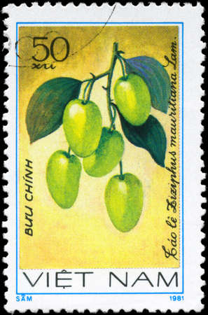 VIETNAM - CIRCA 1981: A Stamp printed in VIETNAM shows the  Ziziphus Ziziphus mauritiana, from the series Fruit, circa 1981  photo