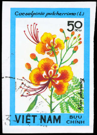 phytology: VIETNAM - CIRCA 1984: A Stamp printed in VIETNAM shows image of a Caesalpinia pulcherrima, from the series Wildflowers, circa 1984