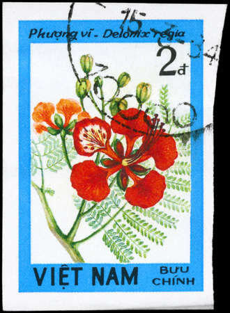 flamboyant: VIETNAM - CIRCA 1984: A Stamp printed in VIETNAM shows image of a Delonix regia, from the series Wildflowers, circa 1984