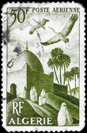 ALGERIA - CIRCA 1949: A Stamp printed in ALGERIA shows the Storks over Mosque, series, circa 1949 photo