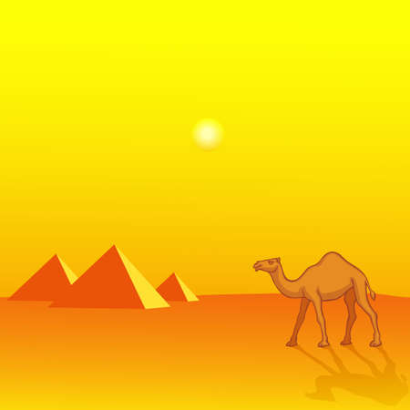 Landscape with Camel and pyramids Illustration