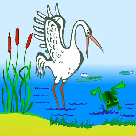 aquatic bird: Stork and frog in the pond
