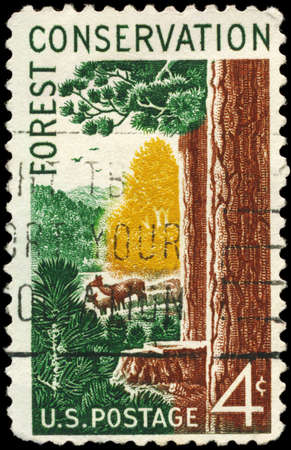 USA - CIRCA 1958: A Stamp printed in USA shows Woods and Animals, Forest Conservation Issue, circa 1958 Stock Photo - 14011902