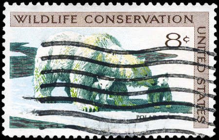 wildlife conservation: USA - CIRCA 1971: A Stamp printed in USA shows the Polar Bear and Cubs, Wildlife Conservation issue, circa 1971