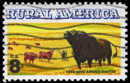 longhorn cattle: EE.UU. - CIRCA 1973: Un sello impreso en los EE.UU. muestra los bovinos Angus y Longhorn, Rural emitir Latina, alrededor del a�o 1973 Foto de archivo