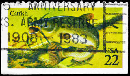 limnetic: USA - CIRCA 1986: A Stamp printed in USA shows the Catfish, Fish series, circa 1986 Stock Photo
