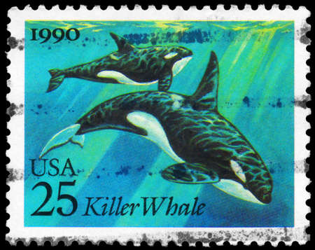 USA - CIRCA 1990: A Stamp printed in USA shows the Killer Whales, Sea Creatures series, circa 1990 photo