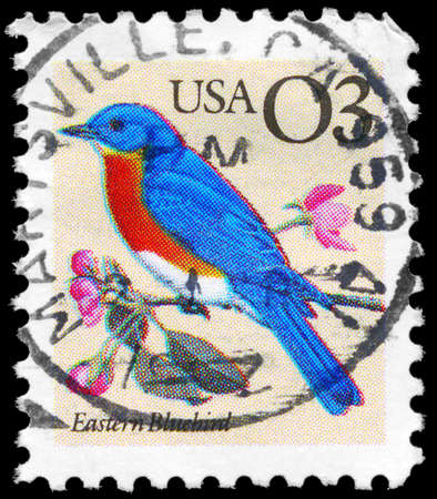 USA - CIRCA 1996: A Stamp printed in USA shows the Eastern Bluebird, Flora and Fauna series, circa 1996 photo