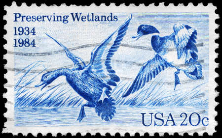 USA - CIRCA 1984: A Stamp printed in USA shows the Mallards Dropping In by Jay N. Darling, 50th Anniversary of Waterfowl Preservation Act, circa 1984 photo