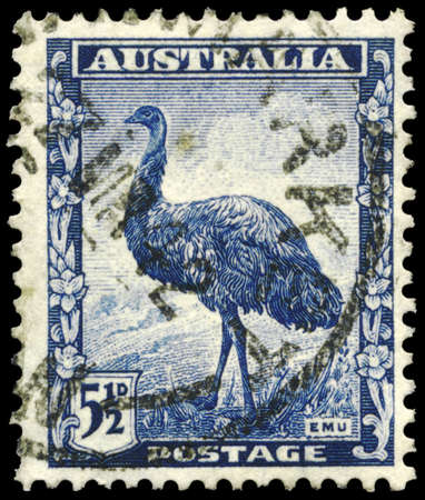 �meu: AUSTRALIE - CIRCA 1942: Un timbre imprim� en Australie montre l'�meu, vers 1942