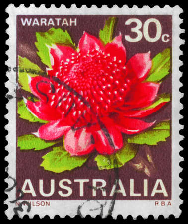 AUSTRALIEN - CIRCA 1968: Ein Stempel in Australien gedruckt zeigt die Waratah, State Flowers-Serie, circa 1968 Editorial