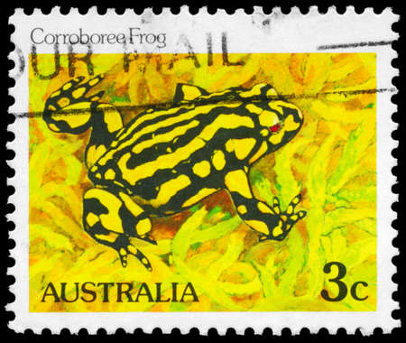 AUSTRALIA - CIRCA 1981: A Stamp printed in AUSTRALIA shows the Corroboree Frog, series, circa 1981 Stock Photo - 16375893