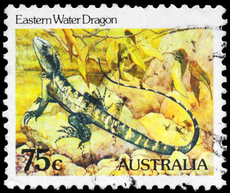 AUSTRALIA - CIRCA 1981: A Stamp printed in AUSTRALIA shows the Eastern Water Dragon, series, circa 1981 Stock Photo - 16376058