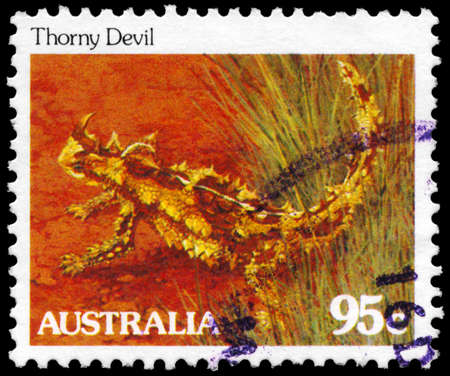 AUSTRALIA - CIRCA 1981: A Stamp printed in AUSTRALIA shows the Thorny Devil, series, circa 1981 Stock Photo - 16376034